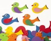 ציפור וכנף סול