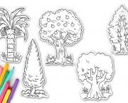 עצים ליצירה
