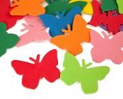פרפרים בינונים