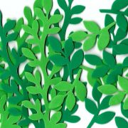 מיקס עלים ירוקים 1