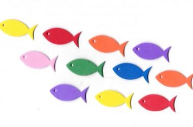 דג קטן (Small)