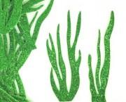 צמחי ים – נוצץ